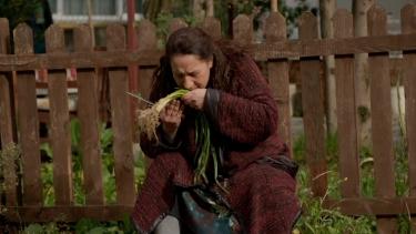 'Ben soğanlarımı kimseye bırakmam'