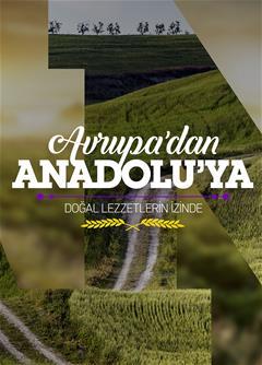 Avrupa'dan Anadolu'ya